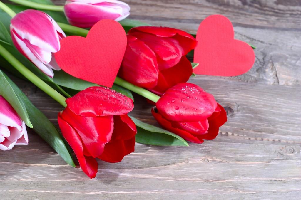 Rencontrer l'amour représenté par deux cœurs et des roses rouges rouges